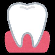 歯科医の多くが、自分の家族にはインプラントを勧めません